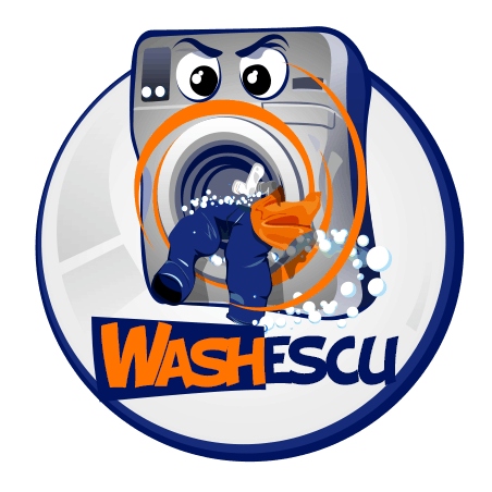 WASHescu.ro